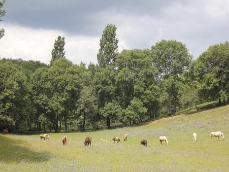 Achat Maison haut de gamme Dordogne 1 291 500 €