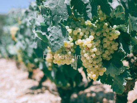 à vendre Domaine viticole de prestige Languedoc-Roussillon 1 430 000 €