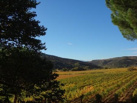 Achat Domaine viticole haut de gamme Languedoc-Roussillon 1 590 000 €
