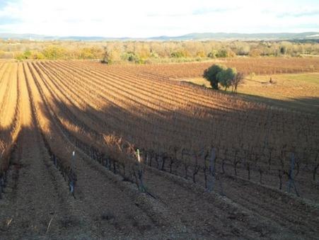 à vendre Domaine viticole de luxe Languedoc-Roussillon 630 000 €